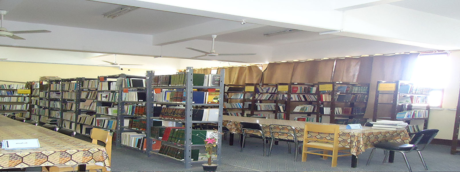 The Faculty Library